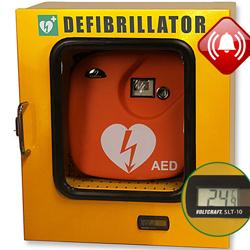 ARMADIETTO TECA DEFIBRILLATORI - 43x21xh.48cm - con allarme e sistema termoregolazione - uso esterno