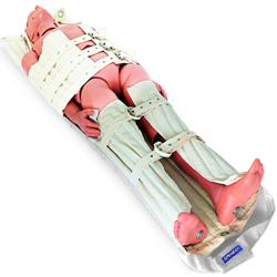 BARELLA DA RECUPERO NRT NEIL ROBERTSON - 108x2xh.183cm - peso 7kg - portata 220kg